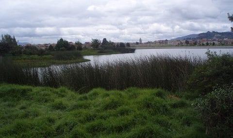 Humedal de Juan Amarillo