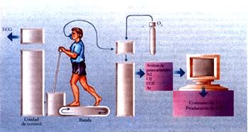 Gases arteriales