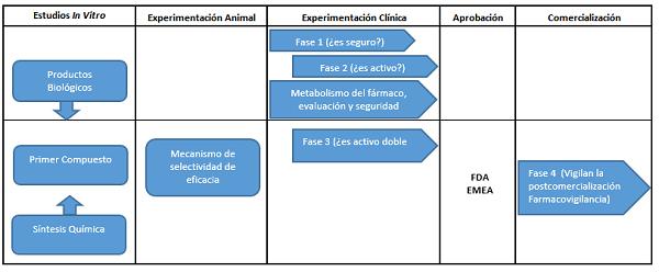 Procedimiento de desarrollo de un medicamento.