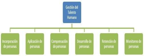 gestion-del-talento