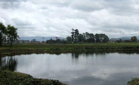 Humedal de Jaboque