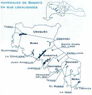 Humedales de Bogotá en sus Localidades